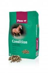 pavo-condition